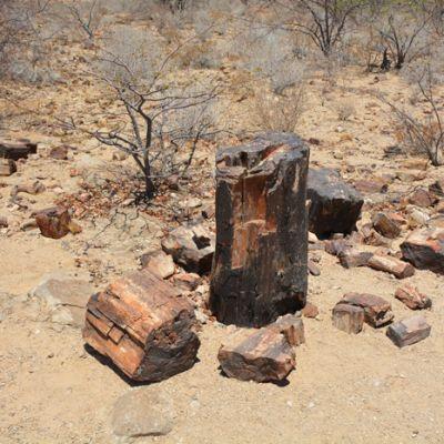namibie21.jpg